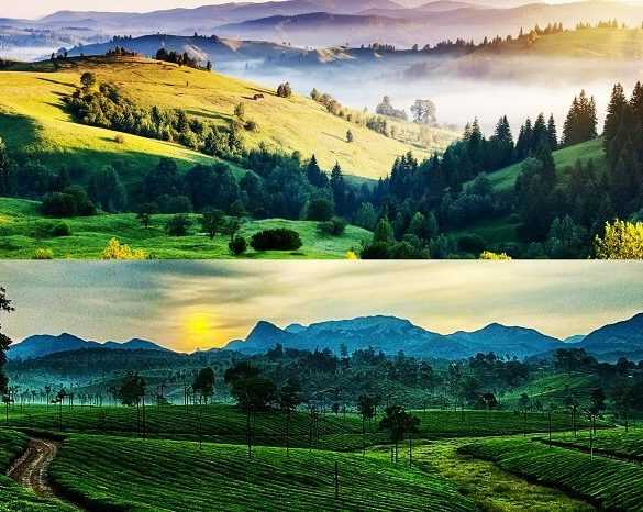 Your Guide to a Laidback Day in Kodaikanal